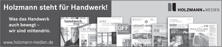 Holzmann Medien GmbH & Co. KG